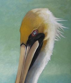 "Pelican. Giclee print. 9"" x 4.5"" fine art print on watercolor paper, using the best pigment based inks for longevity.. $35.00, via Etsy."
