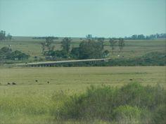 El puente próximo a Pueblo Campamento