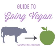 Tips for going #vegan #goveg @Mariah Hutcherson