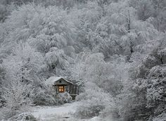 This site is in Portugues, but has great winter photos. 50 incríveis paisagens de Inverno