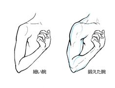 筋肉 女性 描き方 イラスト  Drawing muscular woman muscles illustration