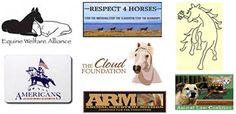 Victory for horses..Legislation | Respect 4 Horses