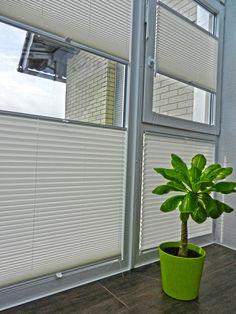 Cute  plissee palme gr n fenster Macht Euer Zuhause sch ner mit unseren Plissees