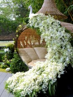 wow...seating area with peacock shape with white flowers...wedding picture idea....www.csfloraldesign.com