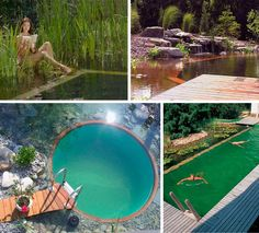 natural aquatic feature blends water plants, falling water and a small swimming area -- no chlorine