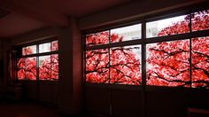 Spectacular Cherry Blossom Murals Made with Hand Prints - Japanese students commemorate their school before they are demolished after the earthquake