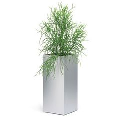 Greens Planter Extra Large, $414, now featured on Fab.