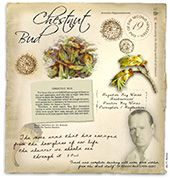 Wild Rose Bach Flower Remedy for resigned, apathetic, bored Chestnut Bud, Water Violet, Bach Flowers, The Way You Are, Alternative Health, Natural Health, Flower Power, Natural Remedies, Herbalism