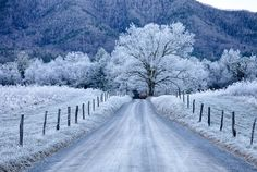 This was taken on December 11, 2013 on Sparks Lane in Cades Cove,  Perfect morning for a hoar frost.  Hoar frost appears as if it is snow, but it is actually frozen dew