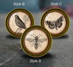 bee,Birds,butterfly -- Drawer knobs/ Handmade Vintage Bronze Dresser knobs cabinet Dresser Knobs pull / Dresser Pull / Cabinet Knobs by HaoDesign on Etsy https://www.etsy.com/listing/385963346/beebirdsbutterfly-drawer-knobs-handmade