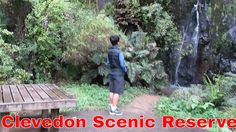 A 5 mintes short track, Auckland Clevedon Scenic Reserve, uncut version