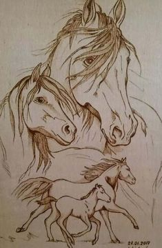 ideas wood burning stencils animals pyrography patterns for 2019 Hand Wood Carving Tools, Electric Wood Carving Tools, Simple Wood Carving, Wood Burning Stencils, Wood Burning Crafts, Wood Burning Art, Wood Crafts, Stencil Wood, Wood Burning Projects