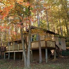 We all love Marsh Hollow after staying there in 2005 and 2006.  It has a great sound system for music buffs, 14 acres to keep Janna busy, three dogs at the farm for play buddies (Janna and Bode tried to outdo each other in play), a big deck, and a wonderful hot tub.  I enjoyed visiting with Mary, the owner, and Mike always got a lot of writing done here.  We'd visit again, but the steps are too much for Janna, and so is Bode!