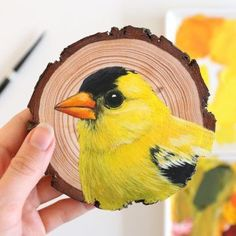 Wood Painting Art, Wood Art, Wood Circles, Art Drawings Sketches Simple, Goldfinch, Wood Slices, 100th Day, Creative Studio, Gouache