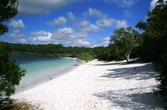 Fraser Island, Australia. Wow!! Love the privacy!
