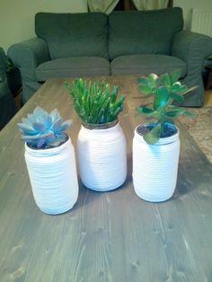 Pot + corde enroulée + plantes grasses. Homemade