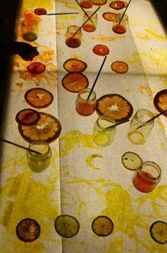 Exploring Citrus Fruit on the light board