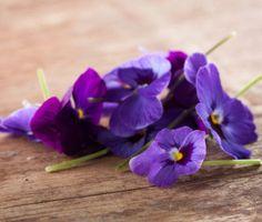 Květy, které můžete sníst: Levandule, fialka, růže