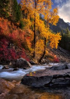 October's Embrace (Cascades, Washington) by Candace Dyar on 500px