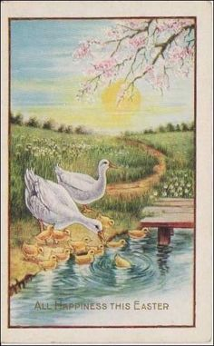 Easter Greeting  Mama Ducks Watch Chicks by sharonfostervintage, $4.00