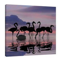Ideas for wallpaper pink flamingo animals Flamingo Wallpaper, Flamingo Art, Nature Wallpaper, Pink Flamingos, Wallpaper Backgrounds, Flamingo Photo, Iphone Backgrounds, Phone Wallpapers, Animals And Pets
