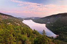 Summer in Acadia National Park by QT Luong