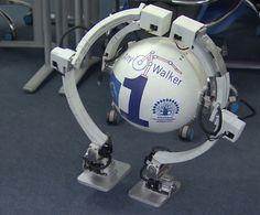 Russian Walking Ball Robot Can Go Where You Go