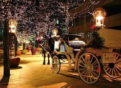 .Romance for two on Christmas
