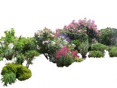 Flowered garden png 03 by MontvalentStock. Flowered garden png 03 by MontvalentStock. Garden Trees, Trees To Plant, Plants Png, Landscape Architecture, Landscape Design, People Png, Baumgarten, Traditional Artwork, Planting Vegetables