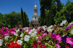 A beautiful day on Baylor's campus.