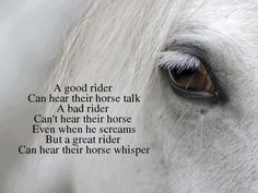 a good rider...