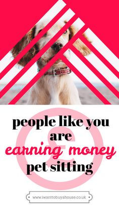 Pet Sitting: The Ultimate Side Hustle Cash From Home, Work From Home Jobs, Make Money From Home, Make Money Online, Money Today, Money Tips, Money Saving Tips, Money Hacks, Making Extra Cash