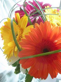 Gerber daisy bouquet with lily/bear grass