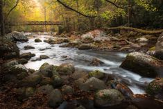 There is also one county in Georgia that is home to 34 different falls, which seems like one heck of an adventure waiting to be had. Blue Ridge Mountains, Great Smoky Mountains, Waterfalls In Georgia, East Tennessee, Landscape Prints, Story Inspiration, White Photography, Photo Art, River