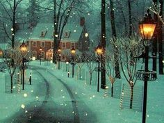 Winter lane in Bowman's Hill, Pennsylvania. Beautiful