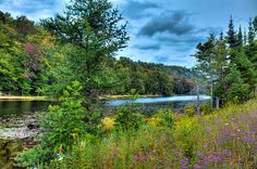 #ADK #Adirondacks #OldForge - Late Summer on Bald Mountain Pond near Old Forge, New York