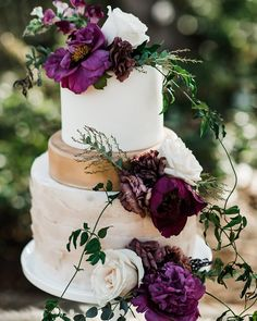 This past weekend's styled shoot was everything we dreamed of. Beautiful dark blooms with rich velvet details have us swooned. Here's a sneak peek as we can't wait to share more. Dog Modeling, Beautiful Wedding Cakes, Weekend Style, Velvet Ribbon, Eat Cake, Bordeaux, Past, Burlap, Floral Design