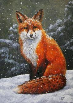 """Snow Fox"" - Original Fine Art for Sale - © Crista Forest"