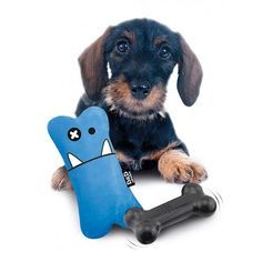 Jouet Crazy Bones - Made in Dog