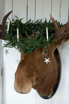 Happy Santa Lucia!