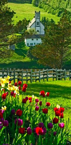 New Glasgow, Prince Edward Island, Canada • photo: Leona Arsenault on Pho-Arts Visual Images & Designs