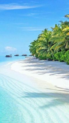How to Take Good Beach Photos Vacation Places, Vacation Destinations, Dream Vacations, Vacation Spots, Places To Travel, Places To Visit, Hotels In Bangkok, Photos Voyages, Beach Photos