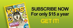 National Geographic Kids videos and facts