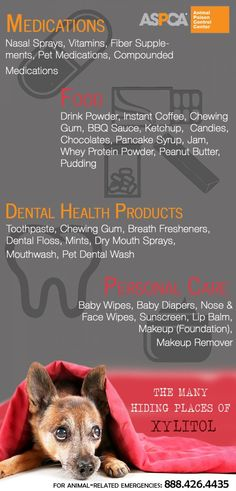The Many Hiding Places of Xylitol Infographic for Pet Owners from ASPCA Animal Poison Control Center 2015. #pethealth #dogs #cats  #petpoisons #dangerous #pets #health #poisons #catsanddogs http://www.aspcapro.org/resource/shelter-health-poison-control/hiding-places-dog-dangers-xylitol