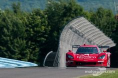 GAINSCO/Bob Stallings Racing Chevrolet Corvette DP: Jon Fogarty, Alex Gurney at Watkins Glen High-Res Professional Motorsports Photography Auto Insurance Companies, Car Insurance, Watkins Glen, Indy Cars, Road Racing, Dns, Chevrolet Corvette, Tudor, Anonymous