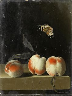 Adriaen Coorte, Three peaches on a stone ledge with a Painted Lady butterfly, 1693-95.
