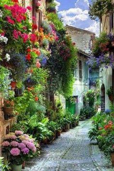 Spello - Umbría 🌸🌿🌼🌞 Dream Vacations, Vacation Spots, Italy Vacation, Vacation Packages, Italy Honeymoon, Vacation Wear, Italy Trip, Vacation Travel, Places To Travel
