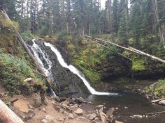 Grotto Falls Trail (Bozeman) - All You Need to Know Before You Go (with Photos) - TripAdvisor