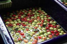 Make your own pectin for jams & jellies
