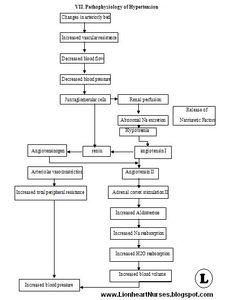 Lionheart Nurses Blog: Pathophysiology of Hypertension